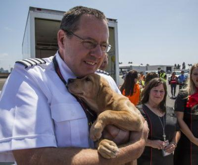 Southwest Airlines Just Gave Hurricane Harvey Animals a Flight to Safety