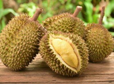 Durians: a market for durian-flavored products?