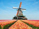 From truffle-hunting to tulips, serving up the very best river cruises for you
