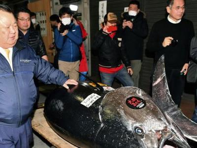 Bluefin sold for $3 million in 1st 2019 sale at Tokyo market