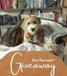 Win a Pet Parents® Pawtect™ Blanket!