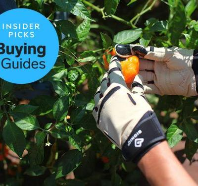 The best gardening gloves you can buy
