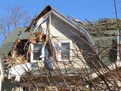 Significant wind damage across state includes toppled trees, scaffolding collapse