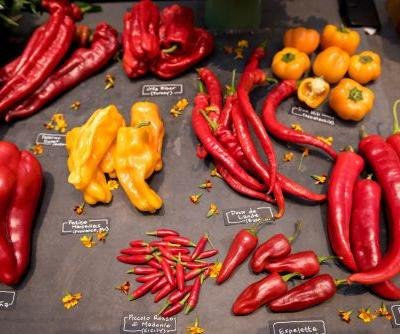Uniting Chefs, Eaters, and Plant Breeders: The 2017 Variety Showcase