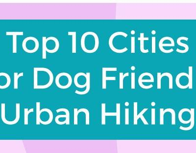 Infographic - Top Cities for Dog Friendly Urban Hiking