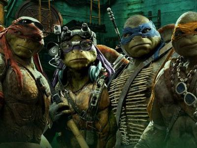 20 Crazy Details About The Teenage Mutant Ninja Turtles' Bodies