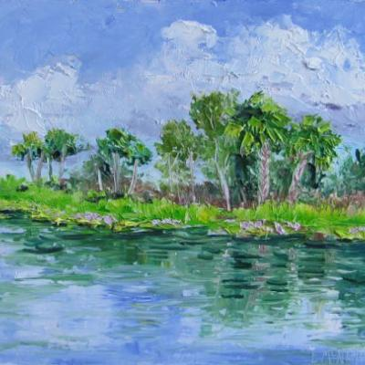 1724 Water Hyacinths at Indian Hills Recreation Area South, Plein Air Alla Prima