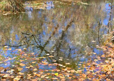 "Fall Landscape,Colorado Landscape, Water Reflections, Fine Art Photography,""Fall Refections"" by International Photographer Kit Hedman, Boarding House Studio Galleries, Denver"