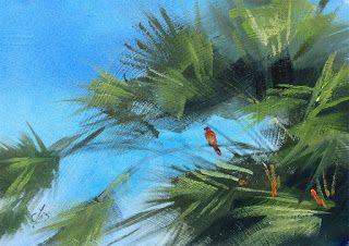 RED TAIL HAWK IN A PALM TREE by TOM BROWN