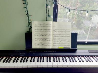 I bought a $570 Yamaha digital piano, and it's the best way I've continued to practice a lifelong hobby
