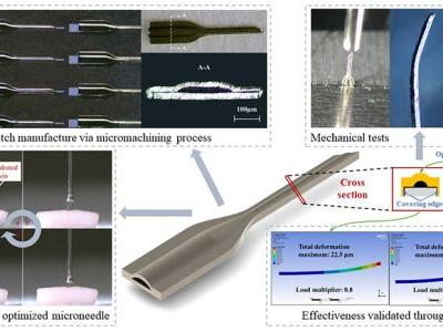 A Minimally Invasive Hollow Microneedle with a Cladding Structure: Ultra-Thin but Strong, Batch Manufacturable