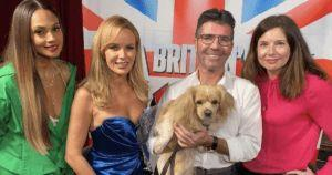 Simon Cowell Has Emotional Meeting With Dog He Saved From Meat Farm