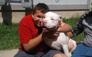 Community Joins Together To Help Boy With Autism Reunite With Lost Therapy Dog