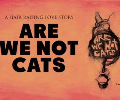 Are We Not Cats Movie trailer