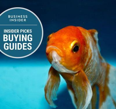 The best fish food you can buy