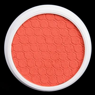 ColourPop Stop It Super Shock Cheek Review & Swatches
