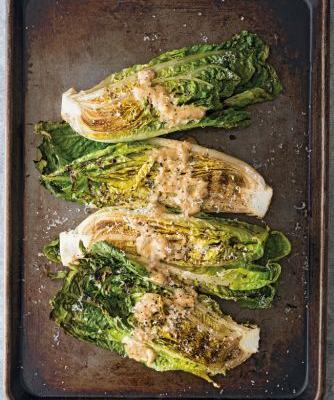Grilled Romaine Salad with Anchovy-Mustard Vinaigrette