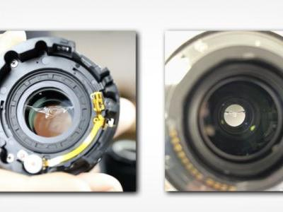 Mystery: Different Canon RF 100-500mm Lenses Similarly Cracking