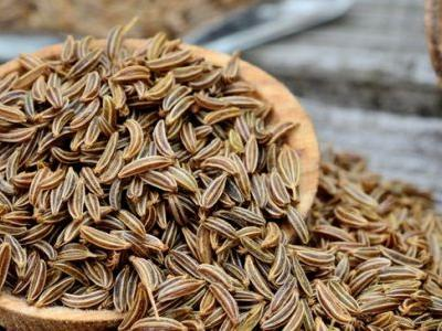 Caraway Seeds Support Weight Loss, Blood Sugar & More