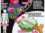 Seek-and-destroy 'guided missile' drug could revolutionise cancer treatment
