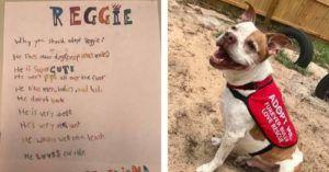Little Girl Makes A List Of All The Reasons You Should Adopt Her Furry Friend