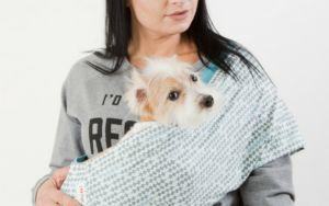 How A Dog Carrier Sling Can Keep Your Dog Safe & How To Use One Safely