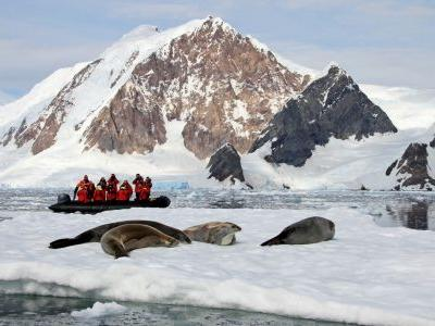 Journey south: 7 amazing Antarctic adventures