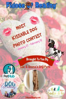 Most Kissable Dog Photo Contest