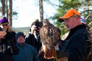 See eagles and more at popular DeGray festival