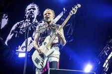 Red Hot Chili Peppers' Flea Equates Removing Music Ed From Schools With 'Child Abuse'