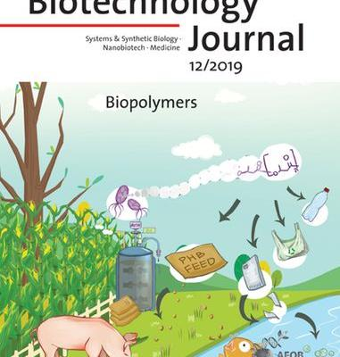 Cover Picture: Biotechnology Journal 12/2019