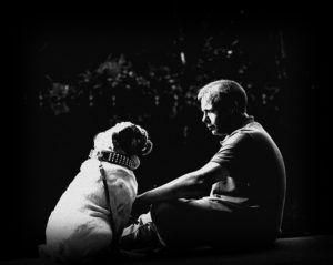 A Farewell Letter From Your Beloved Pet - A Must Watch For Anyone Who Has Said The Hardest Goodbye Of All