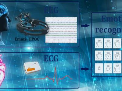 DREAMER: A Database for Emotion Recognition Through EEG and ECG Signals From Wireless Low-Cost Off-the-Shelf Devices