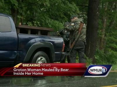 Woman mauled by bear in Groton home