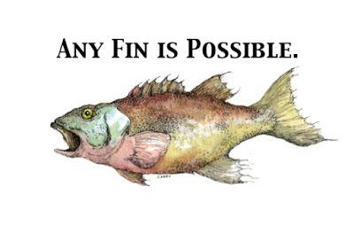 Any Fin is Possible