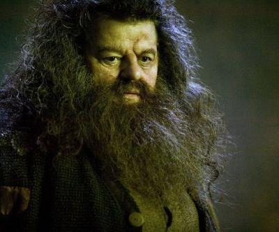 This Harry Potter Theory Suggests Hagrid Is More Powerful Than You Thought