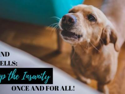 Dogs and Doorbells: Stop the Insanity Once and for All!