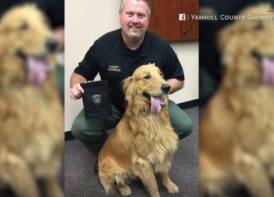 Dog digs up $85,000 worth of heroin