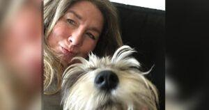 Hospitalized Woman's Dog Gets Adopted Without Her Consent