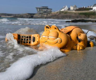 Garfield phones wash up on beach, spark hilarious reactions