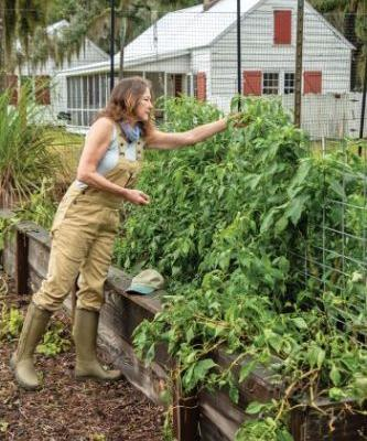 Social Roots Seed Company Wants to 'Reseed the Lowcountry'