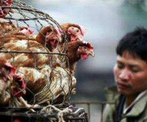 Human Infection of H10N3 Avian Influenza Reported in China