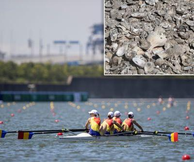 Oyster invasion in Tokyo threatens key Olympics venue