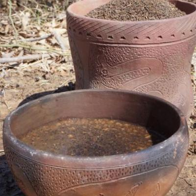 Taking Ancient, Wild Crops from Field toTable