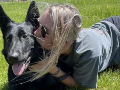 Lost Dog Found 900 Miles Away After Month-Long Search