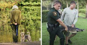 Woman Jumps In Front Of Giant Alligator To Save Her Dog